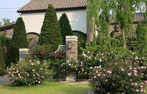 garden1149