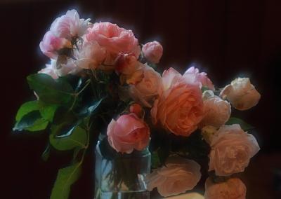 rose1006