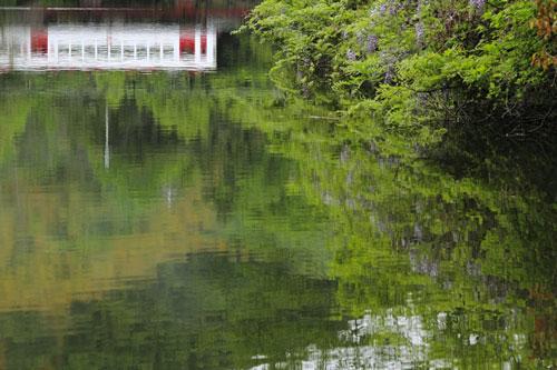 2011/5/5 和歌山電鐵貴志川線 大池遊園