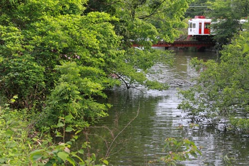 2011/5/14 和歌山電鐵貴志川線 大池遊園
