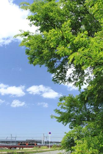 2011/5/7 阪堺電軌阪堺線 我孫子道~大和川