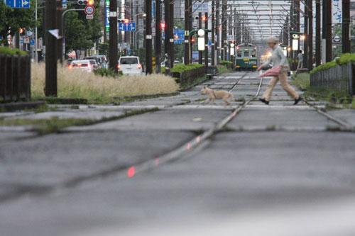 2011/5/29 阪堺電軌阪堺線 綾ノ町