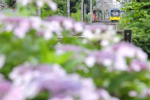 2011/6/11 阪堺電軌阪堺線 聖天坂~天神ノ森