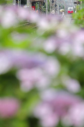 2011/6/11 阪堺電軌阪堺線 聖天坂~天神ノ