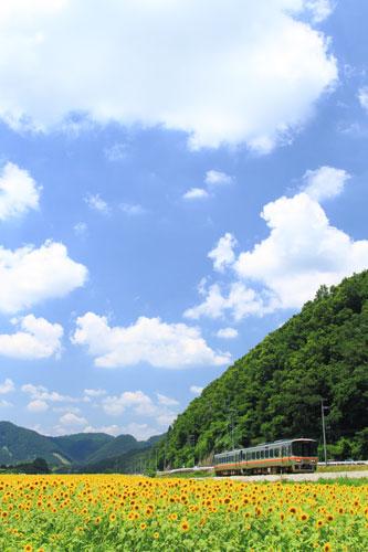 2011/7/16 JR姫新線 三日月~播磨徳久