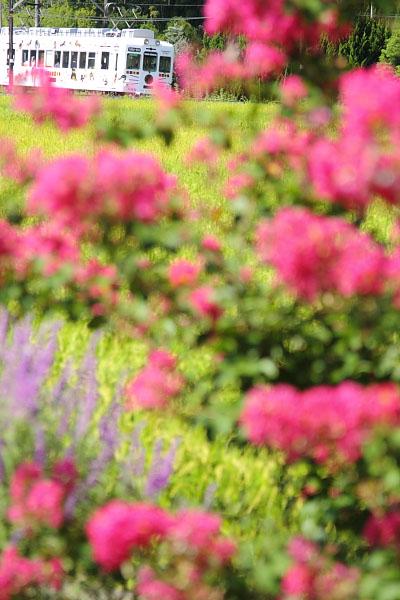 2010/9/11 和歌山電鐵貴志川線 大池遊園~西山口