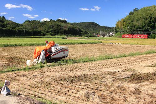 2011/9/23 和歌山電鐵貴志川線 大池遊園~西山口