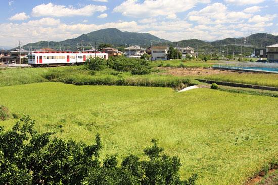 2011/9/23 和歌山電鐵貴志川線 甘露寺前~貴志