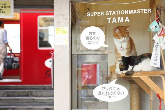 2009年9月 和歌山電鐵貴志川線 貴志駅