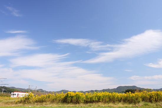 2011/10/29 和歌山電鐵貴志川線 伊太祈曽~山東