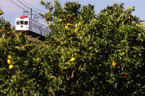 2011/10/29 和歌山電鐵貴志川線 山東~大池遊園