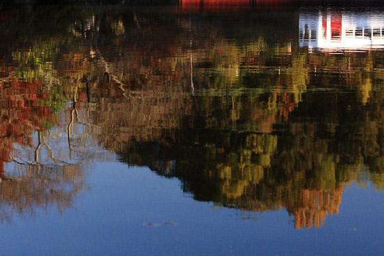 2011/11/26 和歌山電鐵貴志川線 大池遊園