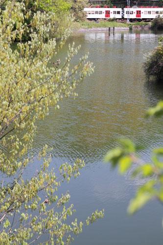 2011/4/29 和歌山電鐵貴志川線 大池遊園