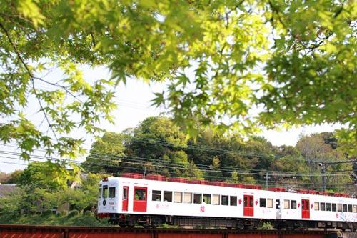 2011/4/30 和歌山電鐵貴志川線 大池遊園