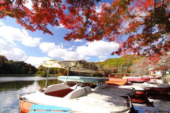 2011/12/4 和歌山電鐵貴志川線 大池遊園