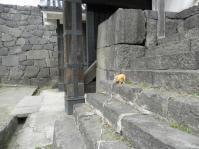 ed.江戸城 20110306 003