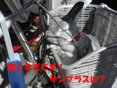 sa-ko 20110326 002