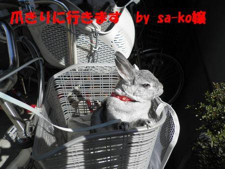 sa-ko 20110326 003