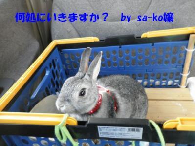 sa-ko 20110327 001