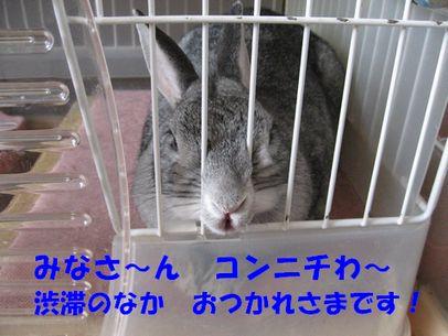 sa-ko 20110501 001
