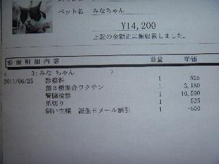 P1000821(1).jpg