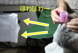 007_convert_20110912183928-crop.jpg