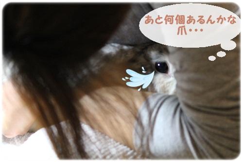 010_20111102191126.jpg