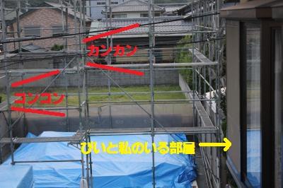 029_convert_20110730222836.jpg