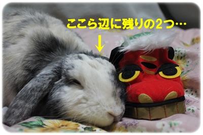 045_20120102180609.jpg