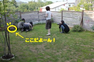 102_convert_20110606022047.jpg