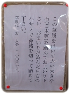 DSC_0131-crop.jpg