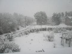 また、雪です。(-_-;)