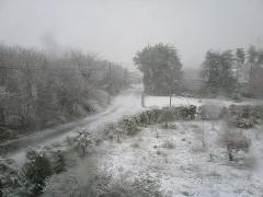 4月末に雪かよ!