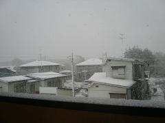 4月末に雪かよ!②