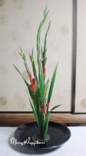flower_20080531-1