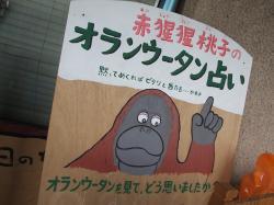 動物園24