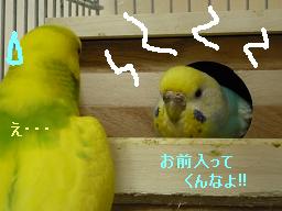 トノ・・・;