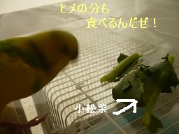 食べてね!