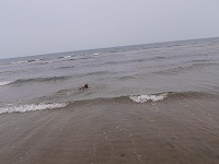 海 5月26日 020