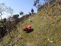 三峰山 2009 053