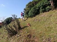 三峰山 2009 057
