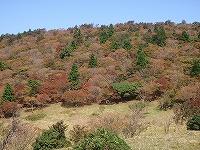 三峰山 2009 078