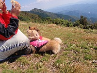 三峰山 2009 092