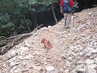 三峰山 2009 123