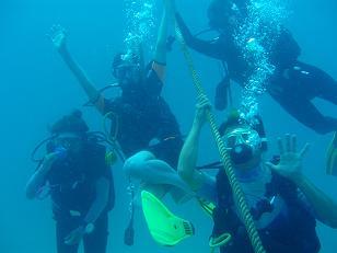 タオ島でダイビング