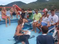 タオ島クリーンナップ ボート