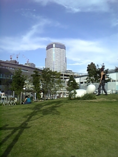 20080814豊洲ドッグラン19