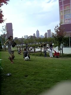20080813豊洲ドッグラン10