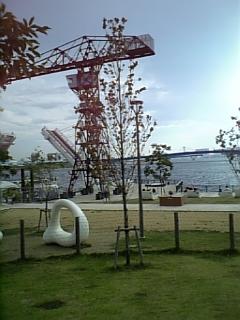 20080813豊洲ドッグラン7
