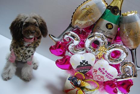 DSC_0165 happy new year 24